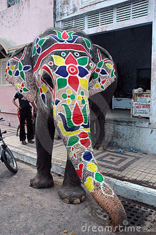 elephant-painted-rathyatra-ahmedabad-5661124