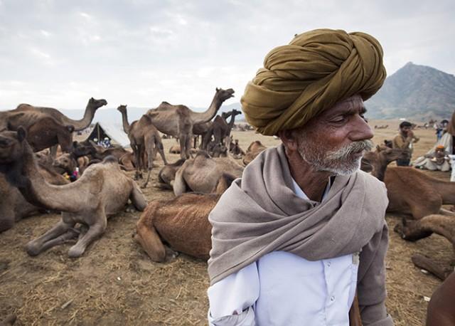 Pushkar-Camel-Fair-Rajast-021