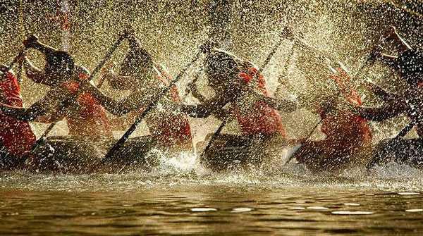 snakeboatrace11